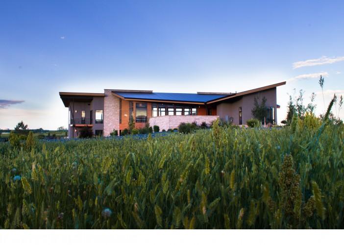 Mallard Exterior Grass